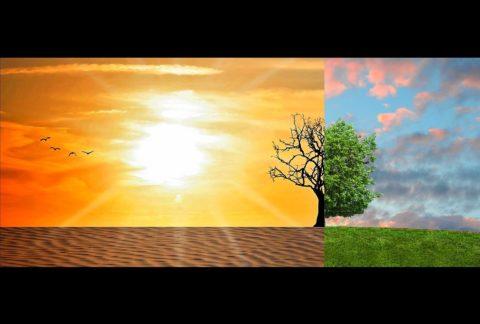Jak zmienić dowolny obszar swojego życia?